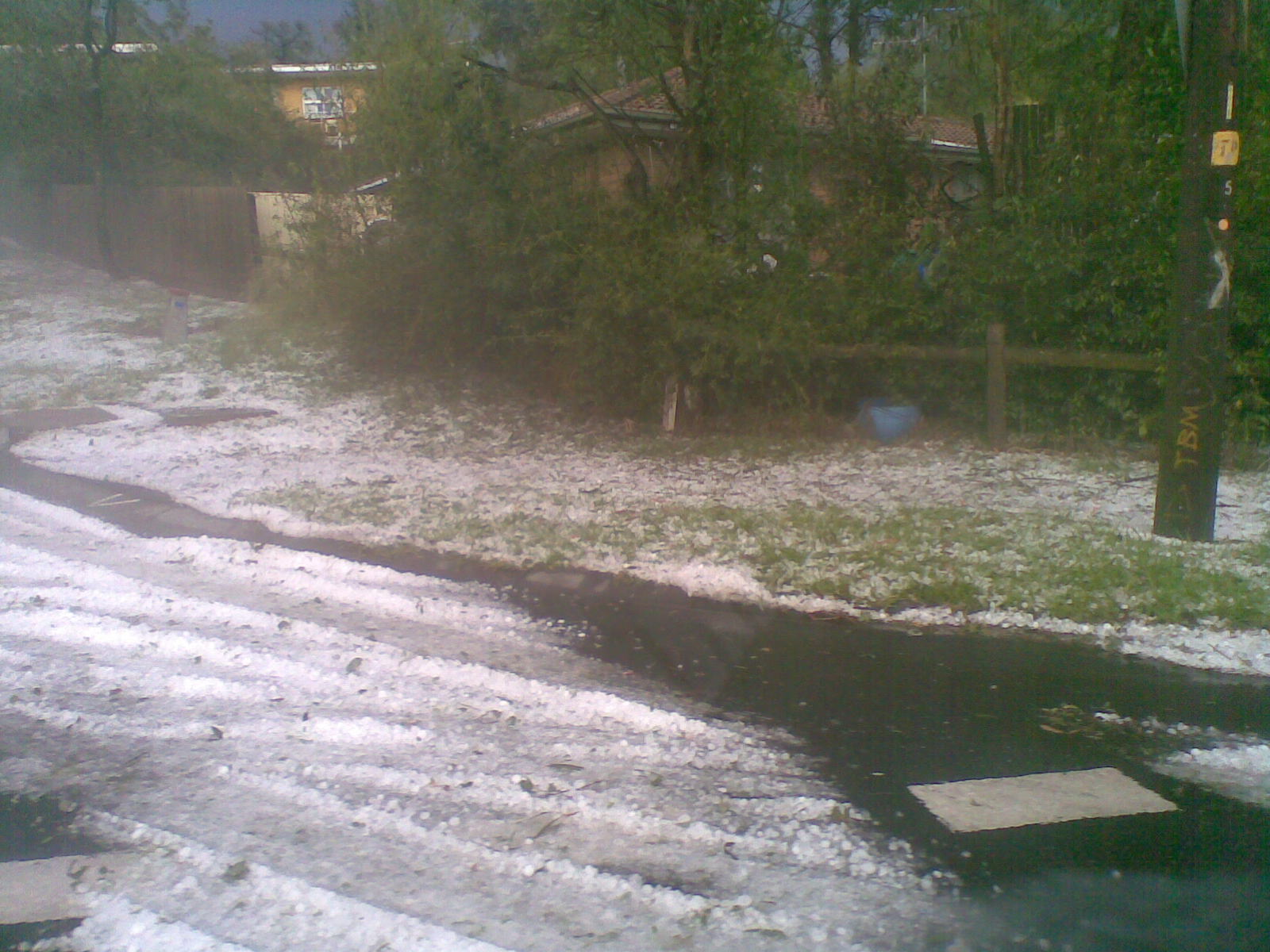 Large Hailstones on Christmas Day - Warrandyte, Victoria, Australia.